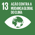 ods_13_small Objetivo 13: Ação Contra a Mudança Global do Clima