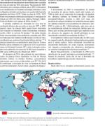 Vírus Zika: Revisão para Clínicos