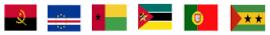 20210612 bandeiras paises org sociedd civil